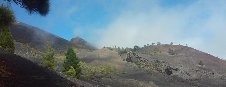Wandelcoaching op La Palma met Eilandcoaching!